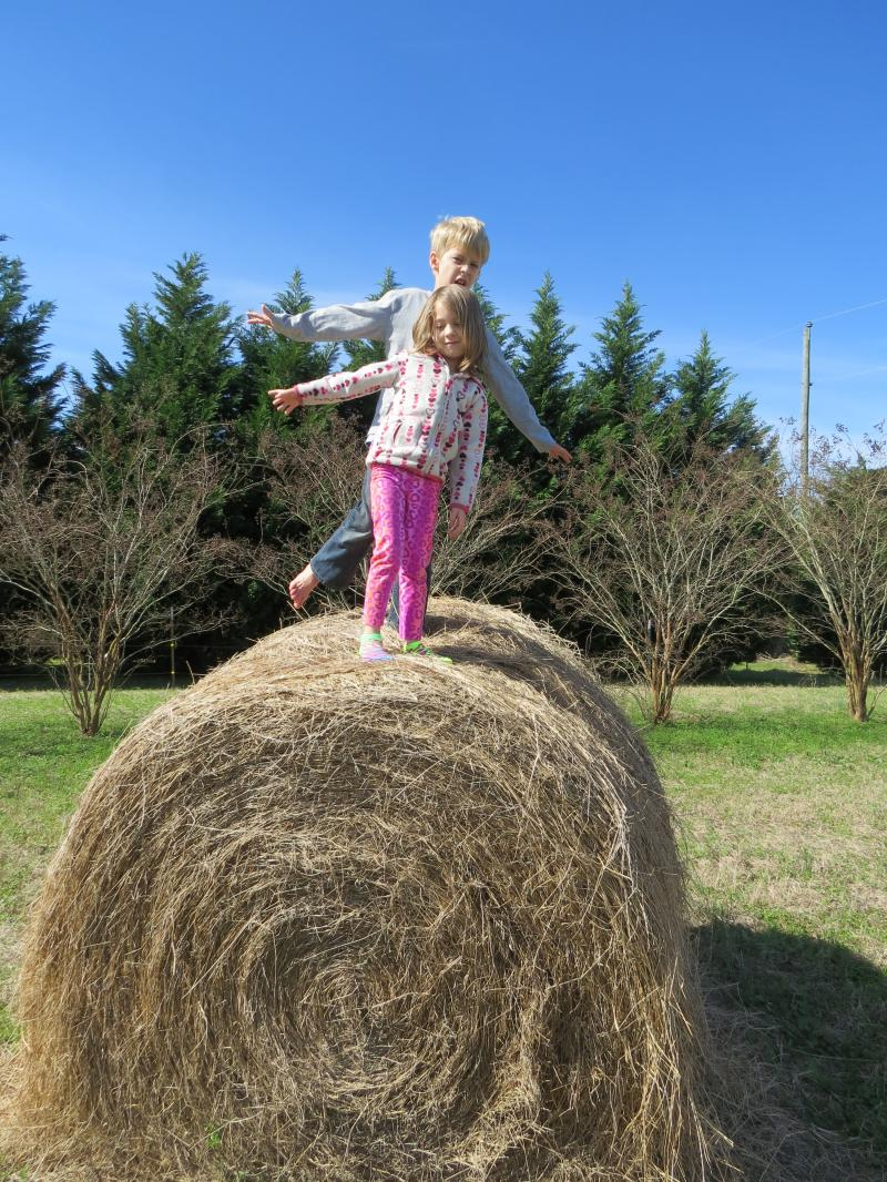 Grandchildren Austin & Becca dancing on the bale of hay!